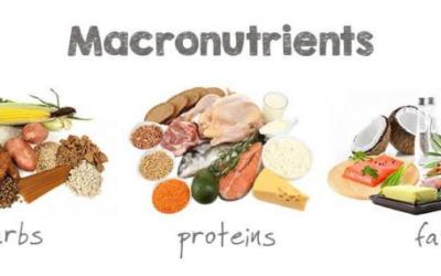 Makronährstoffe / Makronährstoffe